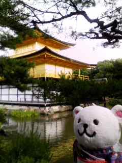 京都観光ちう。